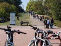 Campus Illberg